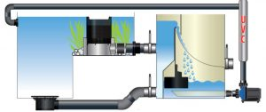 AquaForte Prime Bioskimmer proces
